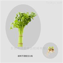 DYQG-2000蔬菜大蒜去根机设备