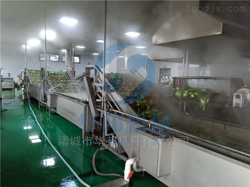 气泡式果蔬清洗机 高压喷淋定制