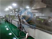 hb3500-氣泡式果蔬清洗機 高壓噴淋定制