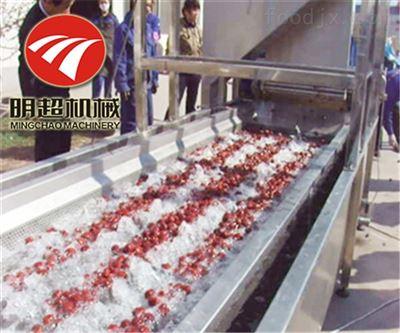 QZM-4一小时500公斤红枣毛刷喷淋清洗机生产厂家