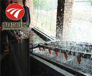 新疆红枣清洗机多功能大枣生产线自动清洗