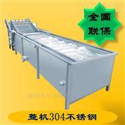 HB3500ZQ-桑葚蔬菜清洗机 红枣气泡清洗设备 两年质保