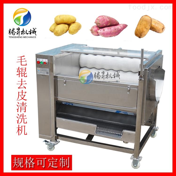 毛刷芋头去皮机 中药材清洗机 尺寸可定制