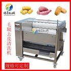TS-M300毛刷芋头去皮机 中药材清洗机 尺寸可定制