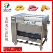 TS-M300-小土豆去皮机多少钱 半夏去皮机哪个厂家的好 全不锈钢制造