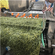 达州大姜清洗机 气泡清洗流水线生产厂家