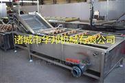 HB3500ZQ-火龙果臭氧涡流清洗机流水线设备 支持定制