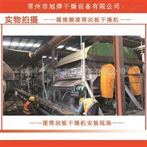 制药业腐植酸滚筒刮板干燥机