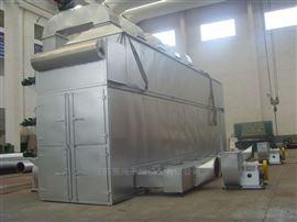 dwt系列脱水蔬菜干燥设备