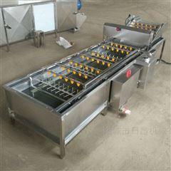 DC-5000全自动葡萄干去石机清洗机