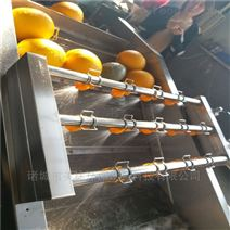 莲藕全自动气泡清洗机