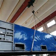 DWT西葫芦专用带式烘干机