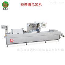 DZ-500拉伸膜豆制品真空包装机