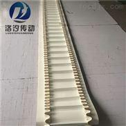 食品级加裙边挡板PVC输送带