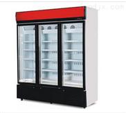 低温冷冻展示柜