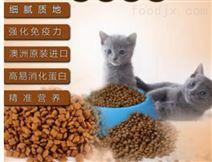 猫粮 生产机械