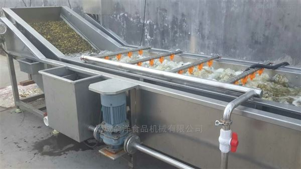 厂家定制专业蔬菜水果农产品清洗机