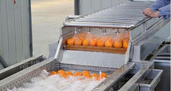 豆类高压喷淋清洗机