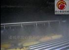 FX-1000全套速冻玉米加工设备