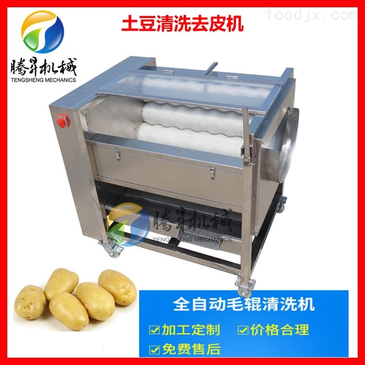 土豆清洗去皮机 毛刷去皮清洗机厂家