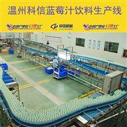 成套蓝莓果汁饮料生产线设备厂家