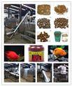 生产小型颗粒鱼饲料 设备