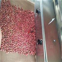 五谷杂粮烘培机