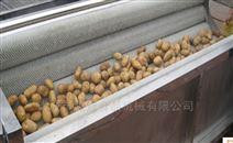 红薯 土豆根茎类去皮毛辊清洗机