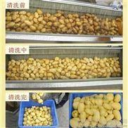 潍坊毛刷清洗机 红薯清洗去皮机生产厂家