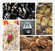 烟台清洗设备 牡蛎毛辊清洗去杂机
