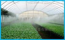 溫室大棚加濕器 花卉種植加濕設備