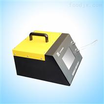 泵吸式气体分析检测仪