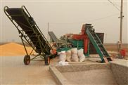 2019年全自動大型玉米脫粒機每小70噸