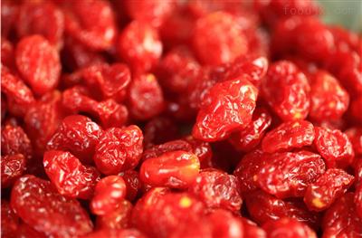 水果加工企业番茄清洗流水线介绍