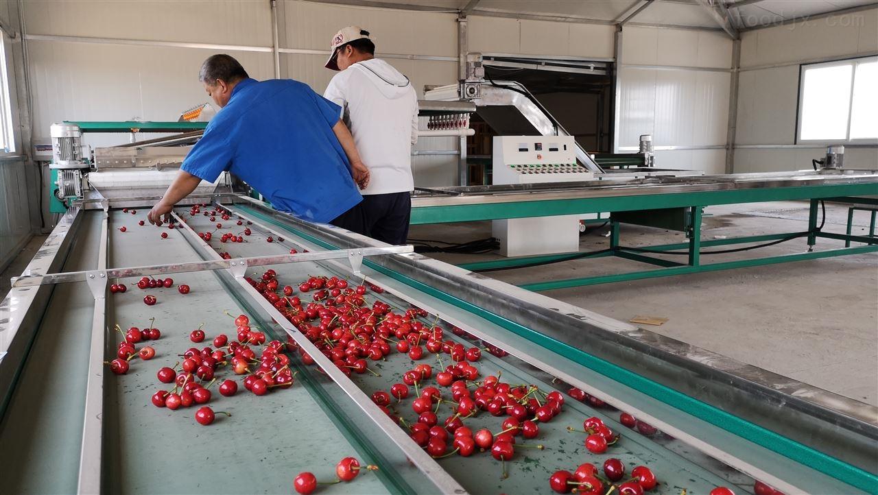 生产水果袋的机器-多功能水果套袋机