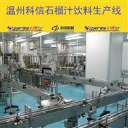全套石榴果汁饮料生产设备石榴饮料灌装设备