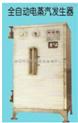 全自動電蒸汽發生器1