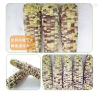 速冻糯玉米专用加工设备