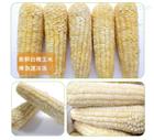 糯玉米蒸煮流水线
