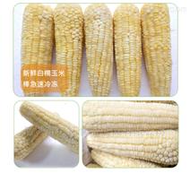 每小時四千棒玉米加工設備