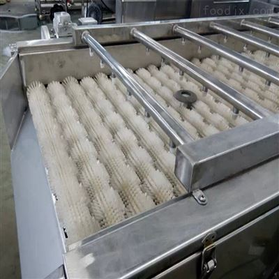 MCQXJ-15番石榴清洗机