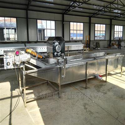山野菜清洗漂烫流水线,净菜加工成套设备生产厂家