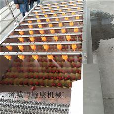 3000型鮮藕毛輥清洗機 廠家直銷