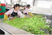 脱水蔬菜干燥机