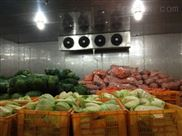 100吨蔬菜保鲜冷库每平方价格