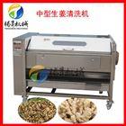 TS-M600根茎类蔬菜清洗机 毛刷清洗去皮机