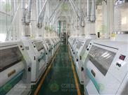 300吨级面粉加工成套设备