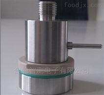 ZC01TPS压力温度一体无线记录仪 灭菌锅验证