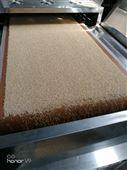 环保型藜麦微波烘焙设备