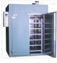 热风恒温干燥箱温度300℃